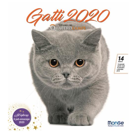 Immagine di CALENDARIO GATTI 2020