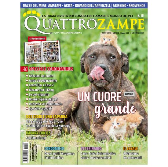 Immagine di QUATTROZAMPE - 2020/06 ARRETRATO Italia