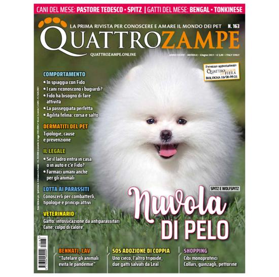 Immagine di QUATTROZAMPE - 2021/06 ARRETRATO Italia